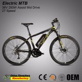 Bafang MID Drive Motor 48V 350W Pedelec Electric Mountain Bike