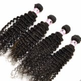 100% Kinky Curly Virgin Indian Human Hair Extensions