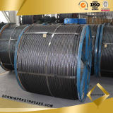 High Quality 12.7mm PC Strand, Steel Wire Rope, Steel