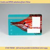 Cheap and Good Quality PVC Business/Promotion/Gift/Loyalty Cards