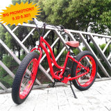 Manufacturing Promotion Motorbikes Ebike for Sale with Biggest Discount in 2017