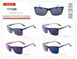 New Manufacture Product Wholesale Small Order Acetate Frame Sunglasses