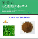 100% Pure Natural High Quality White Willow Bark Extract