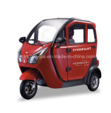 Factory Closed Electric Auto Smart 60V 1000W Mini Car with 3 Seats