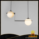 Traditional Elegant Fancy White Pendant Lamp (AP9044-2)