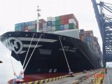 Consolidate Sea Freight From China to Each Big Port