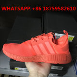 Popular Branded Nmd Sport Shoes for Men and Woman