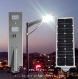 New Style 30W Good Quality Solar Street Light