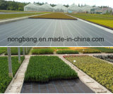 Safe Wholesale Plastic Weed Control Mat