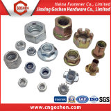 Flange Nut / Cap Nut /Nylon Nut/T Nut/Cage Nut/Wing Nut/ with High Quality