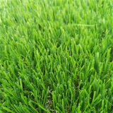 Artificial Grass for Football Field with Good Prices