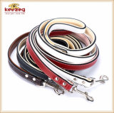 Fiver Colors Classical Real Leather Pet Supplies Dog Leads/ Dog Leash (KC0151)