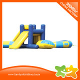 Professional Inflatable Water Slide Water Game for Sale