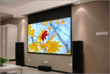 Customize Electric Projection Screen with Remote Control