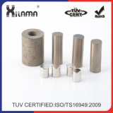 Hot Sale Excellent Permanent Magnet