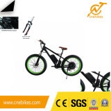 Powerful 1000W Fat Tire Electric Mountain Bike with Rear Motor