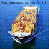 Sea Cargo Shipping/ Logistics Service From China to Nepal