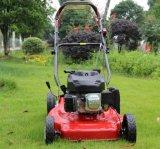 China Supplier Best Price Self-Propelled Mini Gasoline Lawnmower Application Garden Golf Course