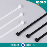 UV Black Cable Tie Wholesale China Golden Supplier Environment