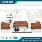 Wholesale Contemporary Sofa with Leather
