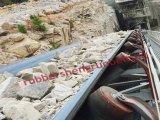 Conveyor Belting Conveyor Belt Chain Rubber Belt for Conveyor Chain