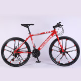 2021 Popular Bicycle in China Cheap Racing Road Bike