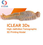 Medical Education Continuous Sectional Human Body Tomographic Visible 3D Printing Models