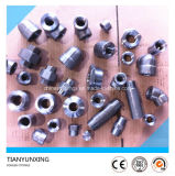 ANSI B16.11 Forged Threaded, Socket Weld Steel Fittings