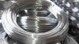 Hot Dipped Galvanized Wire for Binding in Construction