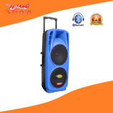 Double 10′′ Professional Stag Speaker with Colorful Light F73