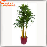 Guangzhou Wholesale Artificial Dracaena Fragrans Potted Plant Tree