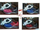 China Factory Supply Fashion Sport Shoes Running Shoes