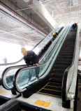 Cheap Price Escalator Cost