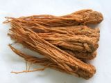 Angelica Root Oil Extracted by CO2