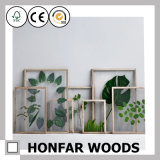 Nordic Style Wooden Leaf Specimen Picture Fame for Wall Decoration