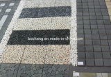 Cheap Chinese Natural Granite for Exterior Decoration Paving Stone/Kerbstone/Bend Kerbstone/Curbstones
