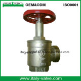 Brass Fire Landing Hydrant Valve with Aluminum Handle (AV4067)