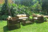 Wholesale Supplies Garden Furniture Rattan Wicker Sofa Set (DS-15592)