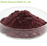 Pure Natural Material Grape Seed Extract 95% UV