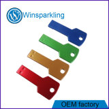 Key Shape USB Flash Memory Beautiful Color