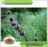 Cyanotis Extract, Powder /Ecdysterone