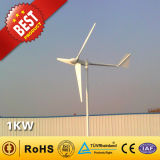1kw Small Wind Turbine / Wind Power Generator for Home Use (1000W)