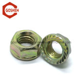 Galvanized DIN6923 Hexagonal Flange Nut with Serration-Coarse Thread
