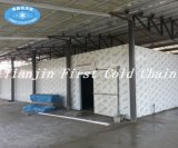 Cold Storage for Meat/Used Cold Rooms for Made in China