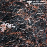 Polished Nero Portoro Marble Slabs for Flooring & Wall (MT070)