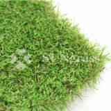 Hot-Selling Artificial Garden Lawn Synthetic Grass Artificial Turf with Wholesale Price (SUNQ-HY00239)