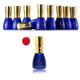 Nail Art Salon Use UV Nail Gel Polish