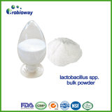 Factory Price Lactobacillus Acidophilus Probiotics Nutritional Supplement Nutraceuticals