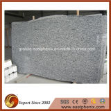 Spray White Granite Big Slabs for Tombstone/Fountain
