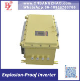 Competitive Price New Function 20kw Anti-Explosion Power Inverter (Made in China)